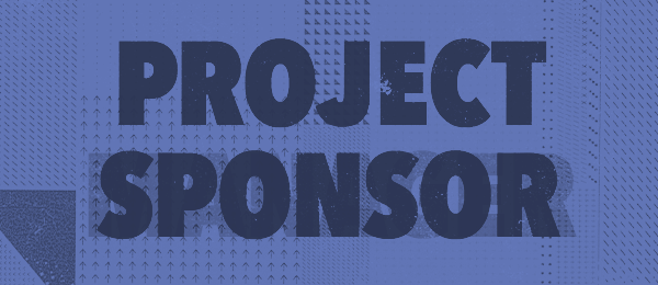 the role of a project sponsor