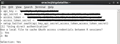 Oracle R APIs screenshot